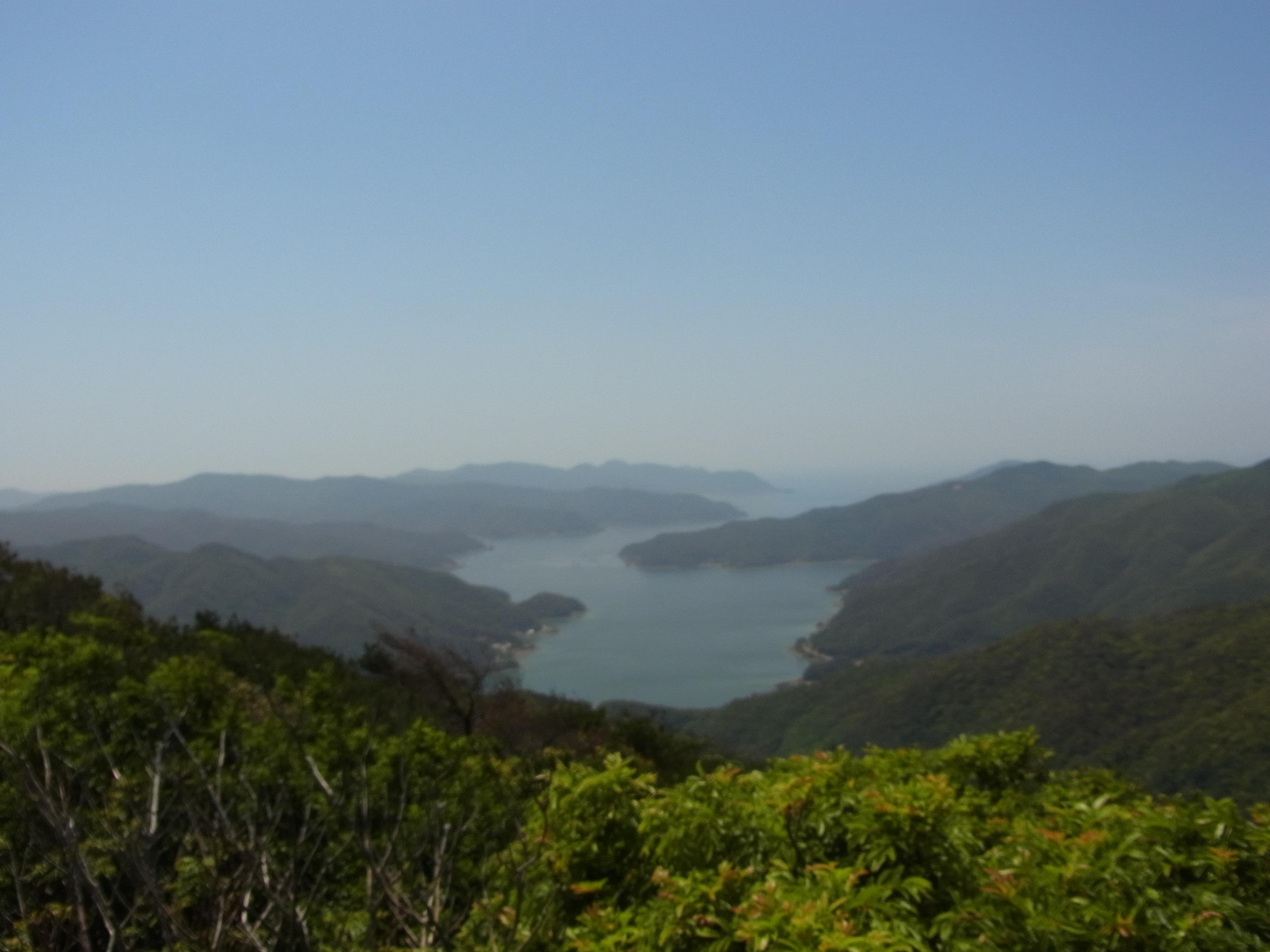 雄大な景色と自然溢れる奄美大島