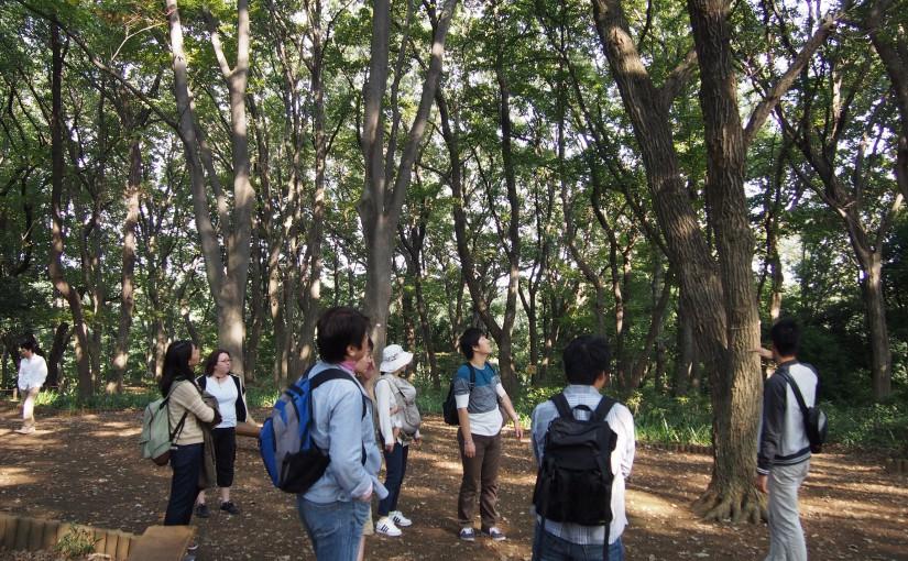 自然観察会@東高根森林公園は最高!!