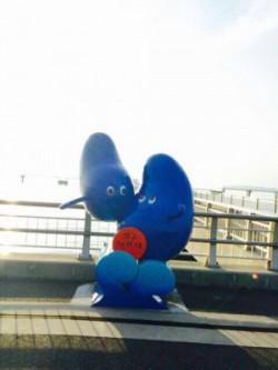 20160721_0730ウミホタル観察会_夕日桟橋オブジェ